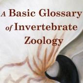 A Basic Glossary of Invertebrate Zoology