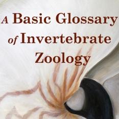 A Basic Glossary of Invertebrate Zoology
